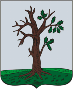 Герб Стародуба Брянская область