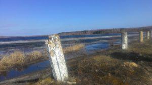 Клинцовский Район Озеро Кожушье