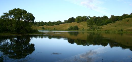 Красивое озеро унечский район