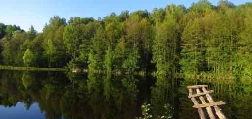 Озеро на реке Рассуха