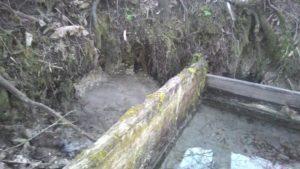 Ключ родник кристалл Памятник природы Клинцовский район