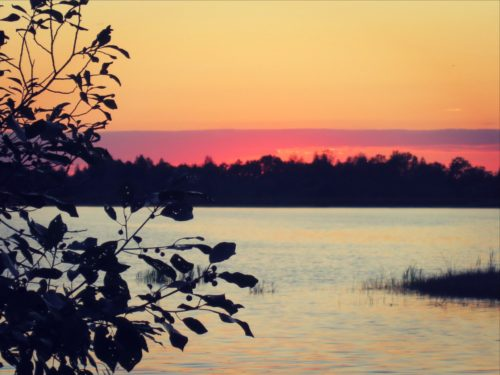 Озеро Заломенье памятник природы