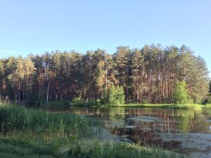 озеро в парке Унеча