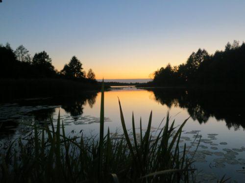 Клинцовский Район Озеро Заломенье