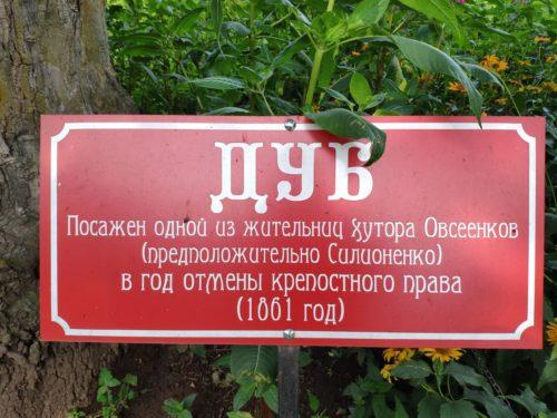 Старинный Дуб Овсеенков