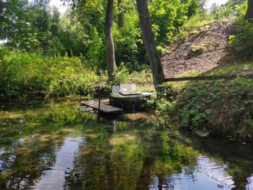 Рудня-Голубовка Клинцовский Район Родник Святой Источник Криница