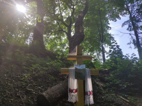 Святой Источник Княж Суражский район