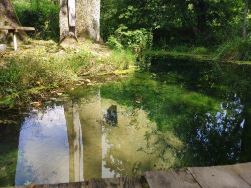 Святой Источник Рудня-Голубовка Фото