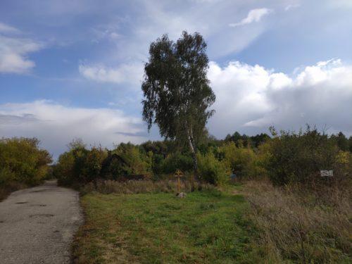 Святой Колодец в селе Душкрно Клинцовского Района