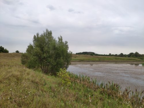 Озеро на реке Днепровка. Лыщичи.