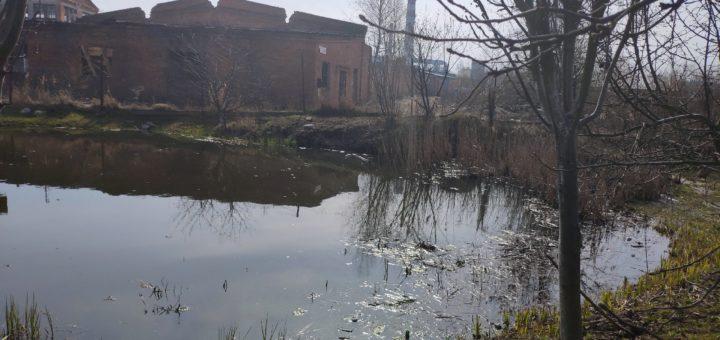 Клинцы пруд
