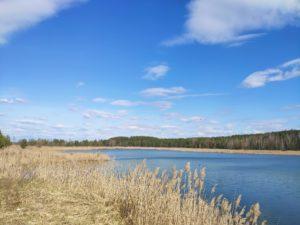 урочище Закот Озеро Суражский район