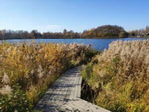 Рудня-Голубовка Озеро