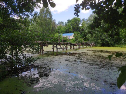 Зеленое озеро и дряхлый мост. Логоватое.