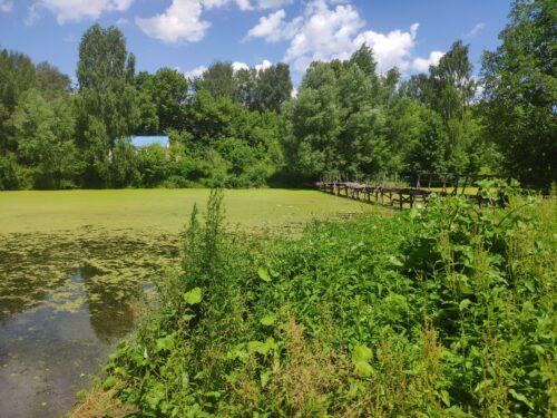 озеро Логоватое мост