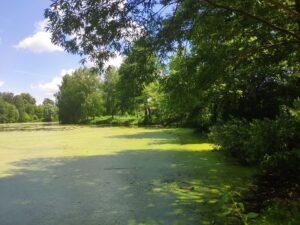 Логоватое озеро