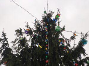 Лопатни Сквер елка фото