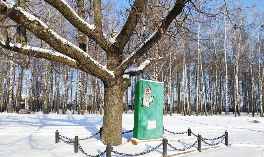 Мемориал. Братская могила 9 борцов с контрреволюцией погибших в 1919 году. Новозыбков.