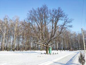 Мемориал погибшим в борьбе с контрреволюцией. Новозыбков.
