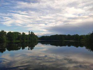Озеро Кулаги Суражский Район