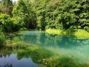 серебряный ключ родник озеро