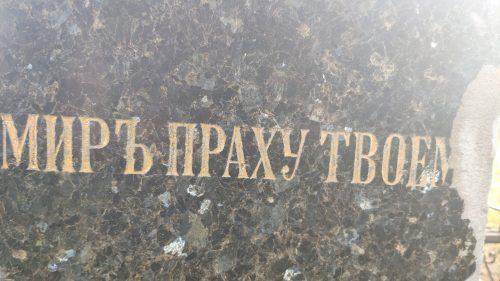 место захоронения рода Гусевых Елионка Стародубский район кладбище
